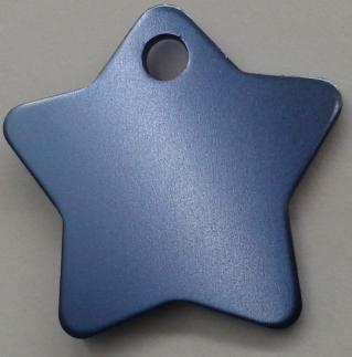 Aluminium Light Blue Star Pet Tag