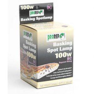 Basking Spot Lamp 100w Bayonet