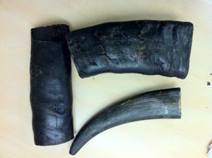 Buffalo Horns Smoked 2.5kg