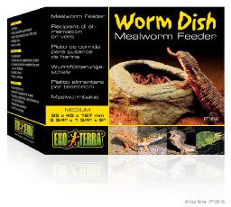 Mealworm Dish