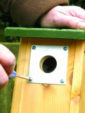 Nest Box Plate 28mm hole