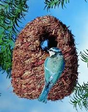 Nest Shelter